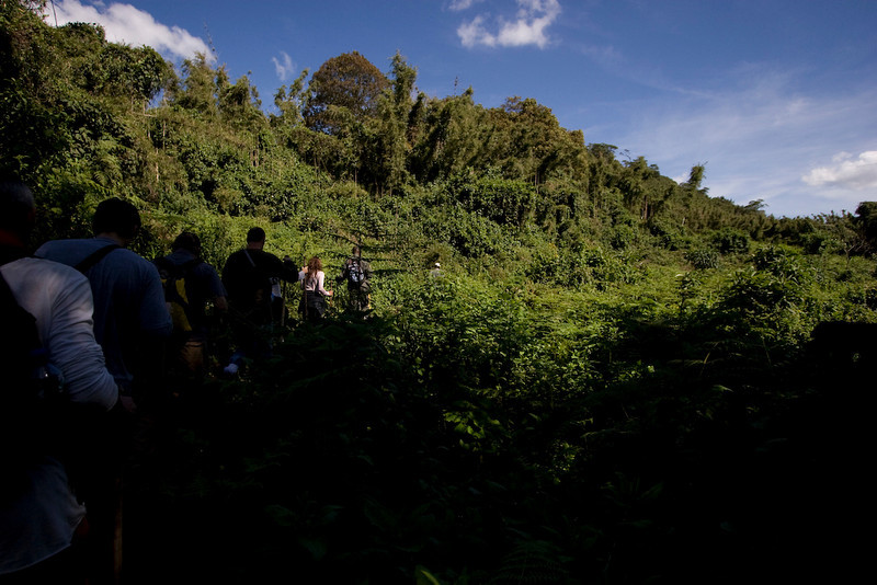The hike up the mountain is through dense vegetation and lots of muddy slopes.