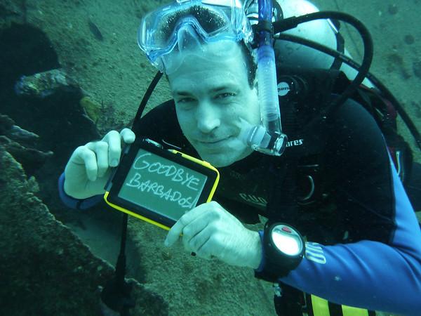 Diving February 5, 2011