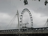 The London Eye is a giant Ferris wheel on the South Bank of the River Thames in London, England. The entire structure is 443 ft tall.