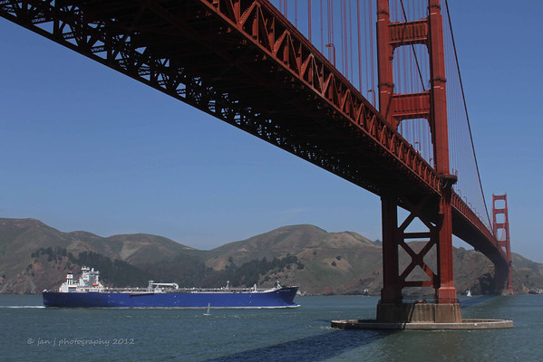 From Fort Point