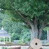 Landscape_SC_12Sept08_004