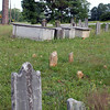 cemeterynewberry