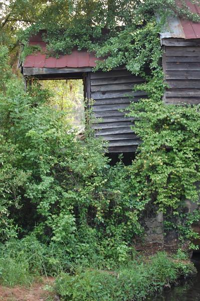 Mill_10May2008_015