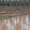 Mill_10May2008_024