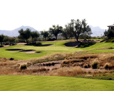 Kierland Ironwood #5