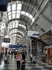 Upstairs in Terminal B is the 50 foot-or-so brontosaurus skeleton that is also familiar to regular travelers through O'Hare