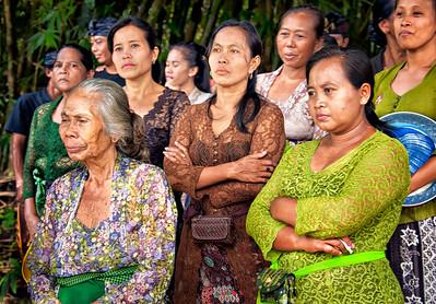 Cremation Observers, Kuripan Tabanan