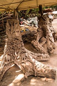 Ancient Kingdoms 2015 Dick Fox - SFA Photo