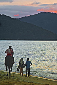 Horese Couple n Sunset-5174Web800