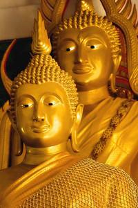 Thai2006-11382-web680