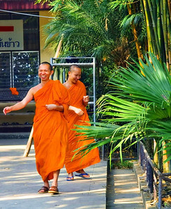 Buddhist monks, Chiang Rai, December 2006