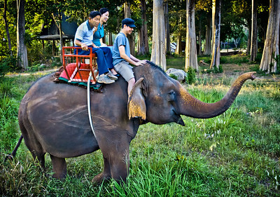 Atchara,Dad,JakeOnElephant_2013-01-03_Thailand_KhaoYai-4408