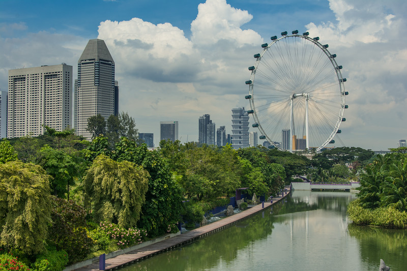 A view of the Singapore Flyer, at 165 m the world's second tallest ferris wheel, from Gardens By The Bay in Singapore, November 2014. [Singapore 2014-11 001]
