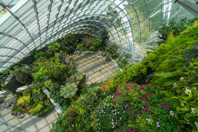 Looking down a wall of Impatiens and other flowers, inside the Cloud Forest Dome at Gardens By The Bay in Singapore, November 2014. [Gardens By The Bay 2014-11 084 Singapore]