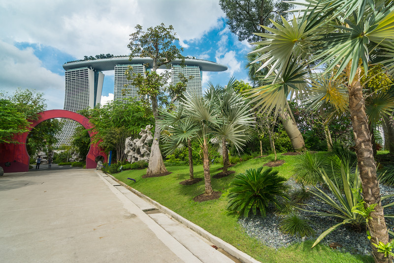 The spectacular gardens of Gardens By The Bay in Singapore, with the Marina Bay Sands Hotel in the background, November 2014. [Gardens By The Bay 2014-11 009 Singapore]