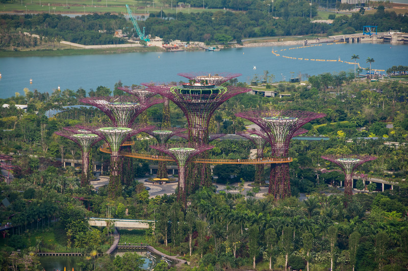 Gardens By The Bay from 33D Bar, Singapore, 2014-03.