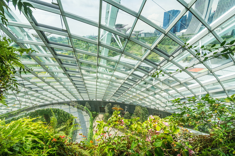 Inside the Cloud Forest Dome at Gardens By The Bay in Singapore, November 2014. [Gardens By The Bay 2014-11 068 Singapore]