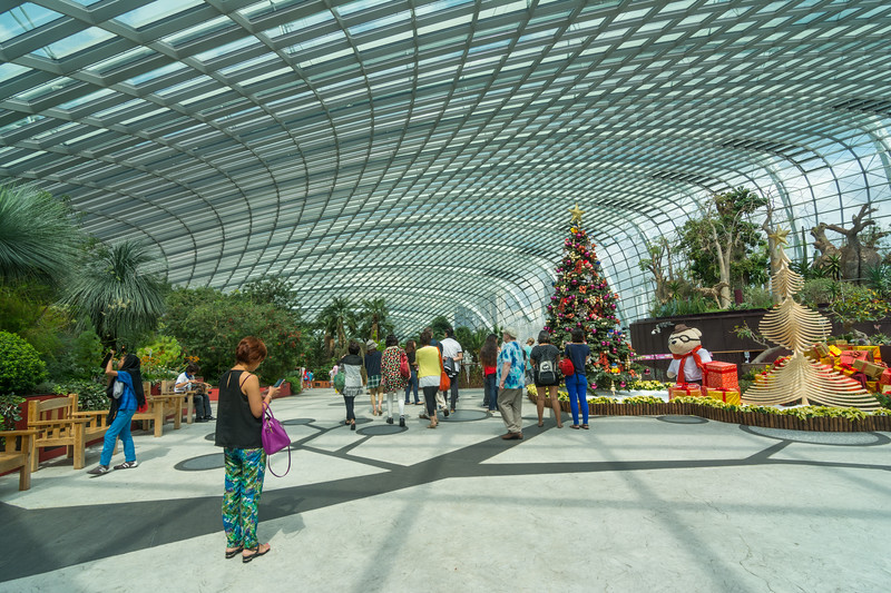 Inside the Flower Dome at Gardens By The Bay, Singapore, November 2014. [Gardens By The Bay 2014-11 015 Singapore]