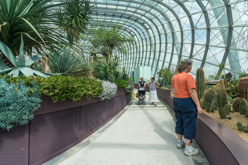 Inside the Flower Dome at Gardens By The Bay, Singapore, November 2014. [Gardens By The Bay 2014-11 017 Singapore]