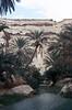 036-Nefta Tunisia