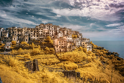 CORNIGLIA COLOR INFRARED