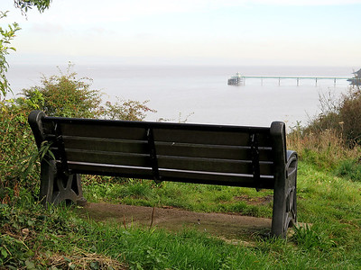 Bench with a pier view.