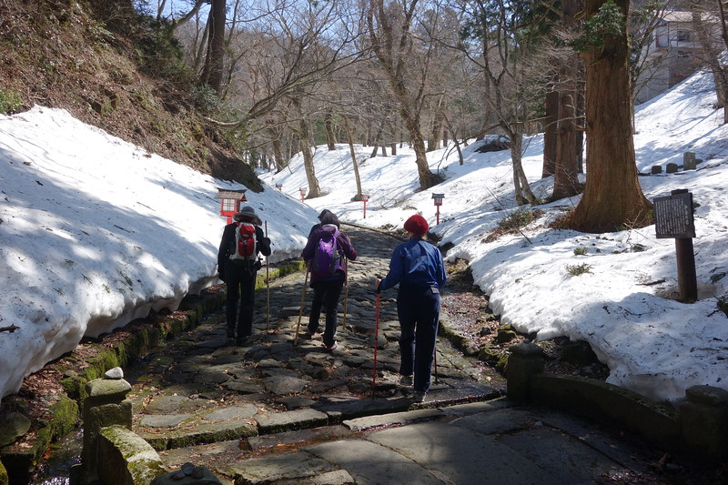Spring snow walking on Mt Daisen.