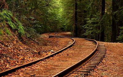 IMG_2420 Eden Tracks