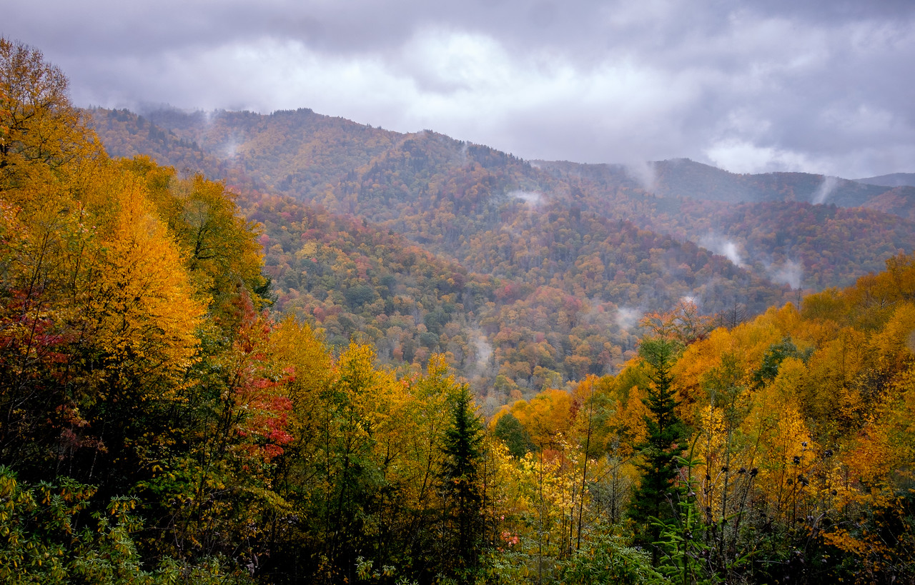 GREAT SMOKY MOUNTAIN N.P. - NEWFOUND GAP ROAD