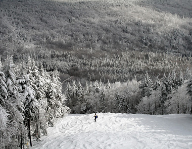 Snowshoe Mountain Resort (WV) -- Silver Creek, Bear Claw