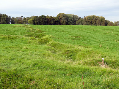 German trenches Newfoundland Park.