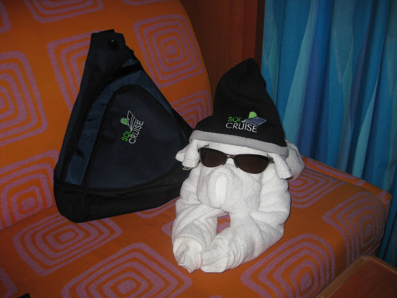 SQLCruise puppy modelling the gear with style.