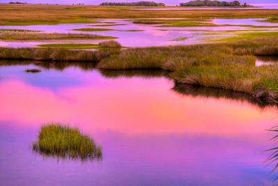 Magic marsh fields.