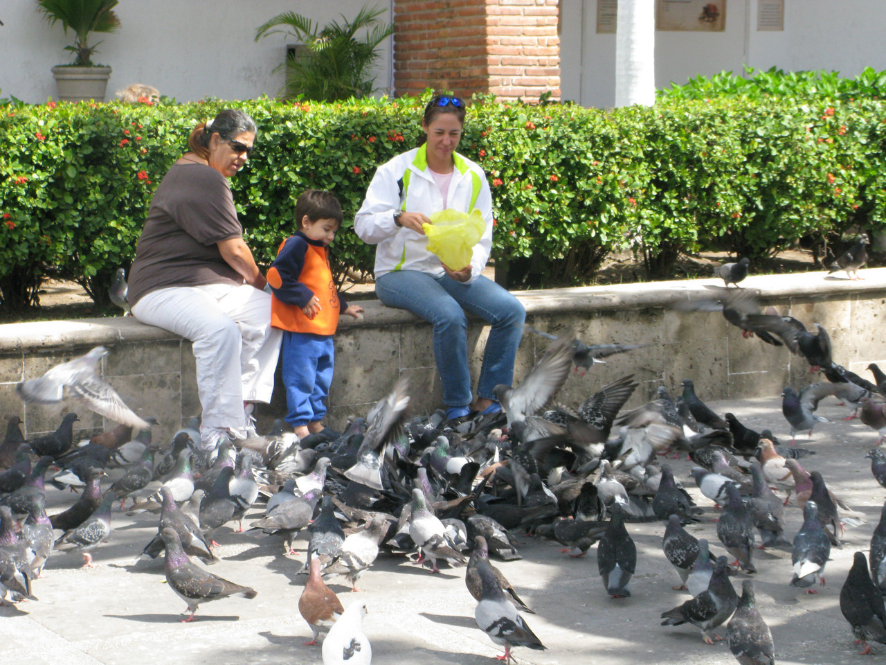 Kids feeding pigeons in the square.
