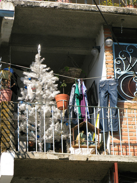 Loved this white Christmas tree alongside drying blue jeans!