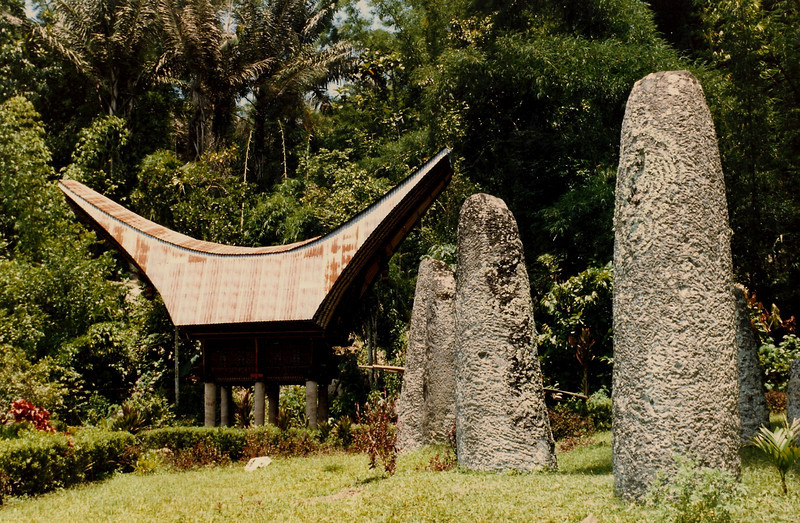 Toraja is famous for its buffalo horn roofs . . .