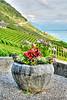 ROUTE DE LA CORNICHE OVERLOOK-EPESSES, SWITZERLAND