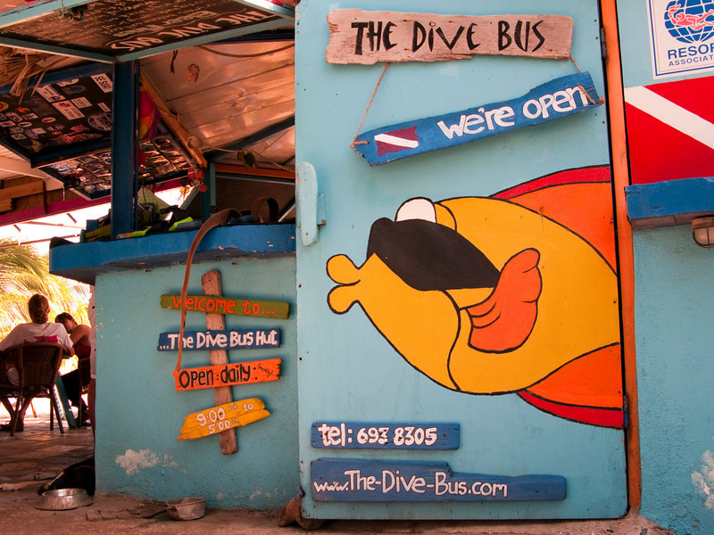 The Dive Bus Shack