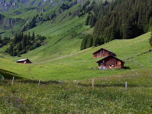 Chalets at Bort (1/2 way up First Mountain)