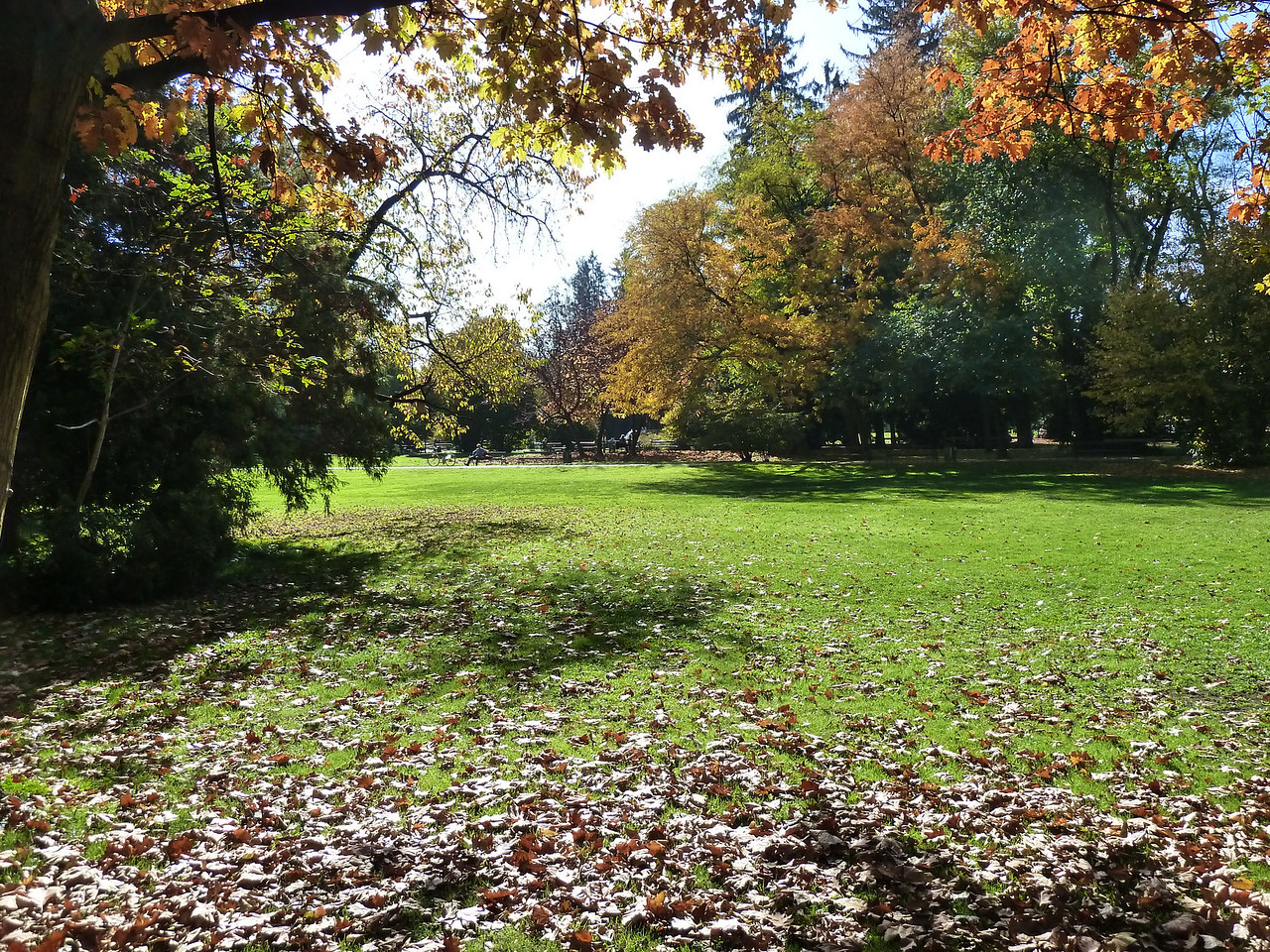 Fall in Graz's city park