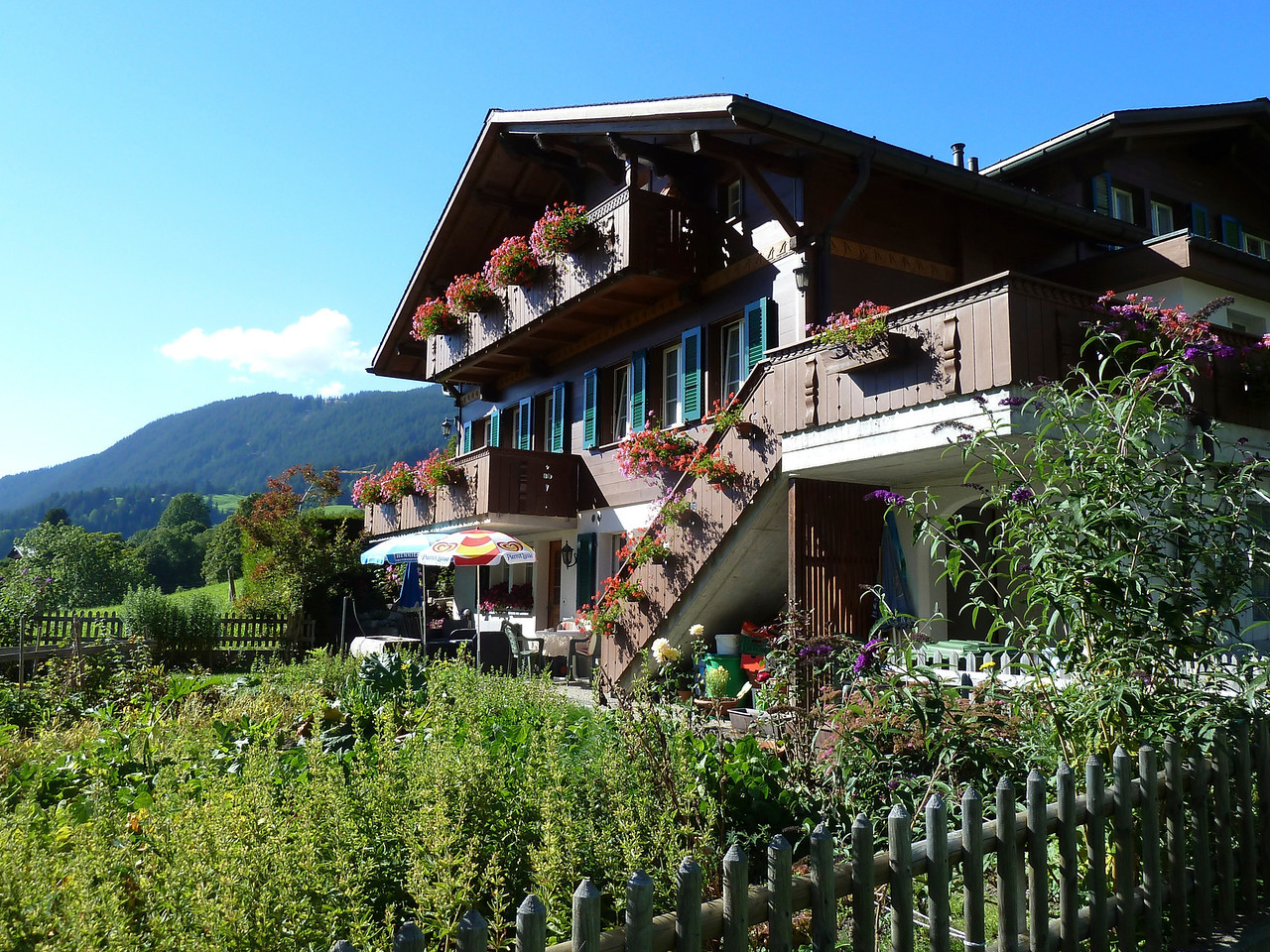 The beautiful house in Grindelwald with our vacation apartment on the ground floor where all the umbrellas are!! Could this be any better??