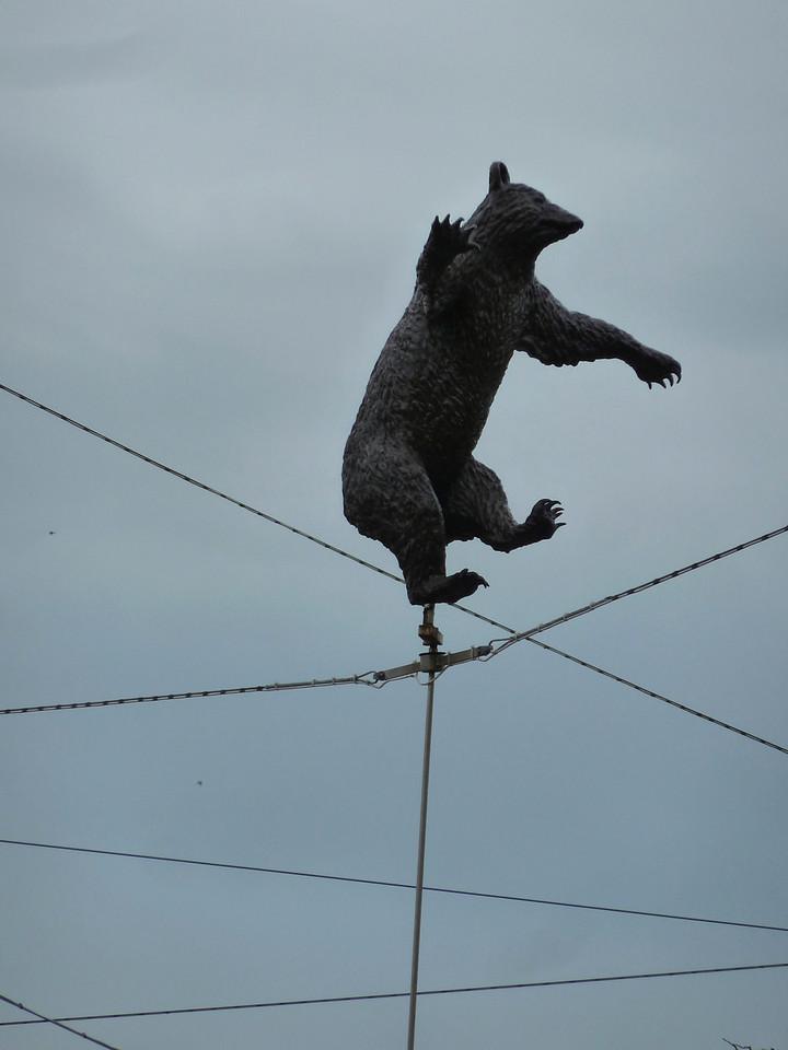 The dancing bear of Bern.