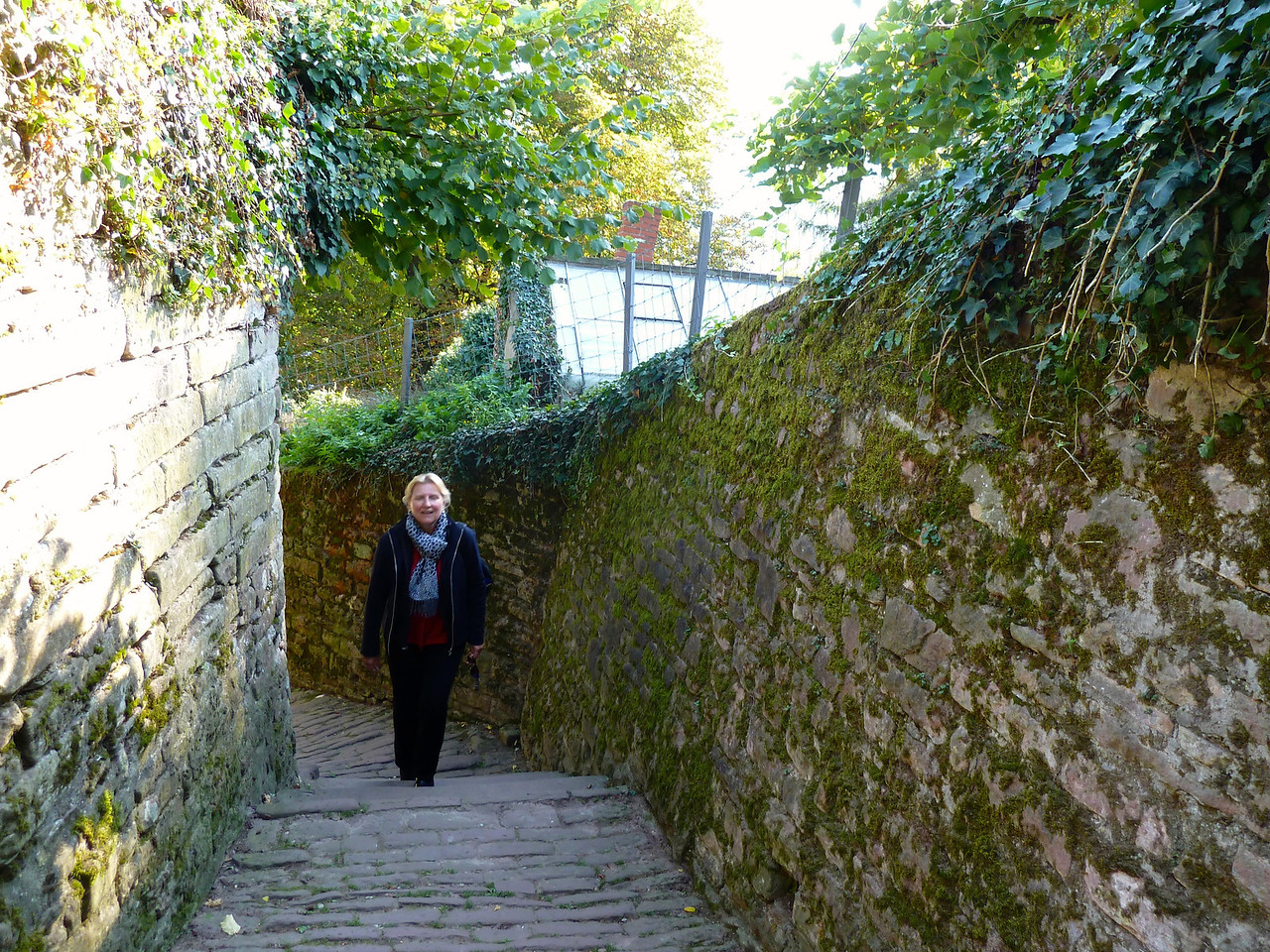 """Another huff 'n puff up to the famous """"Philosophenweg"""" (philosophers' trail) where famous German philosophers walked and talked in the past when there was still time for such things!!"""