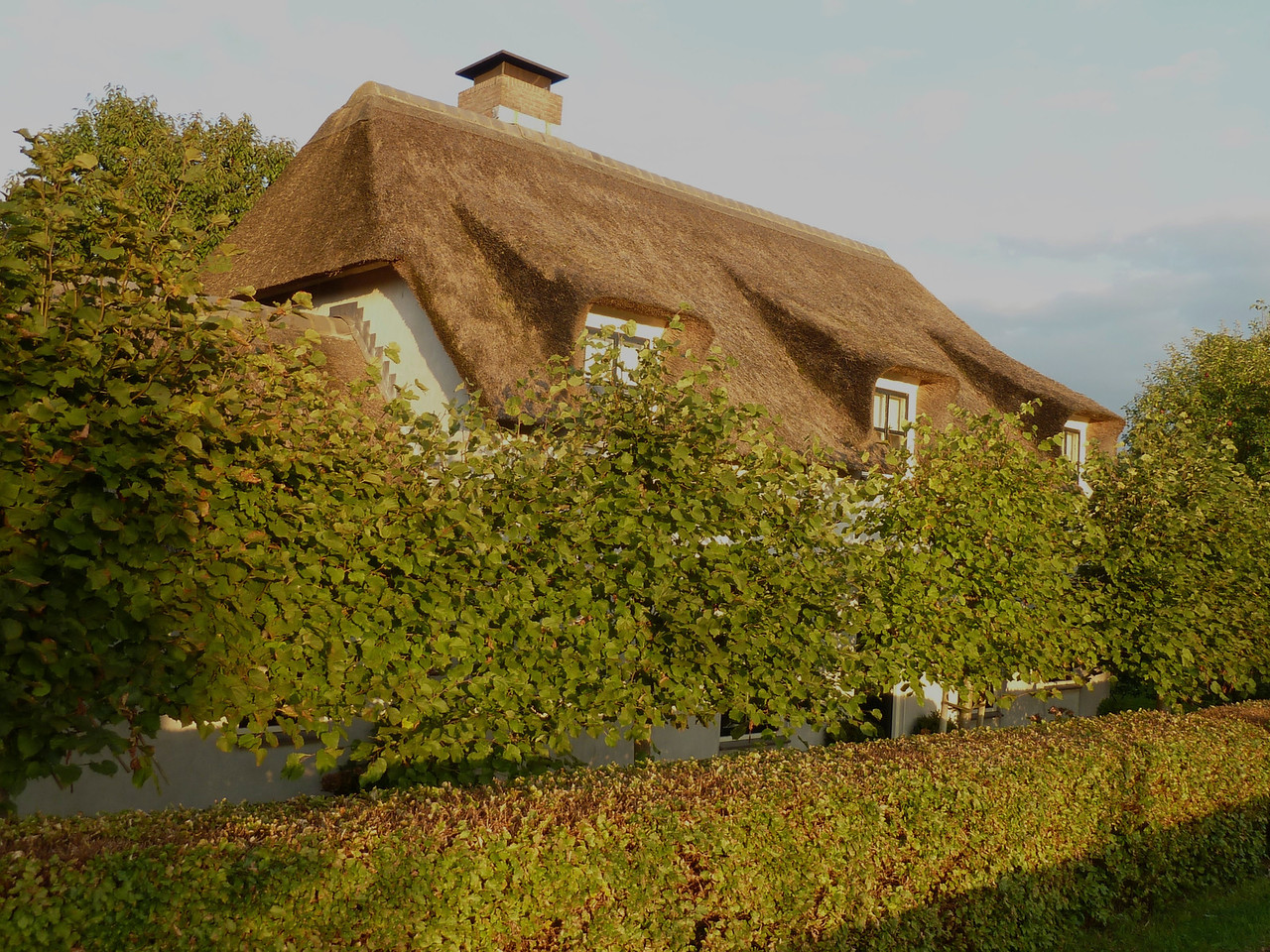 Old-fashioned straw roofs of Holland!