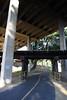 Path under rail bridge on wooden trestles under road bridge.
