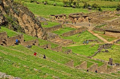 Inca agricultural steps