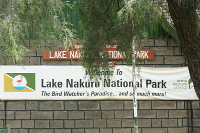 Entrance to Lake Nakuru National Park. Apart from the famous flamingos,  there is an abundance of wildlife: waterbucks, buffalos, pelicans, marabou storks, etc. in the lake and its shores.