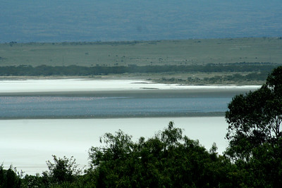 Alkaline deposits on the Nakuru lake.