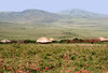 Masai village at a distance