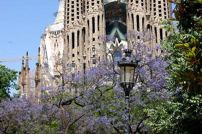 Barcelona 2013 – Sagrada Família